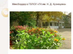 Миксбордер в ГБПОУ «ТК им. Н. Д. Кузнецова»