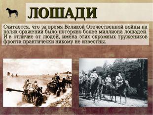 ЛОШАДИ Считается, что за время Великой Отечественной войны на полях сражений