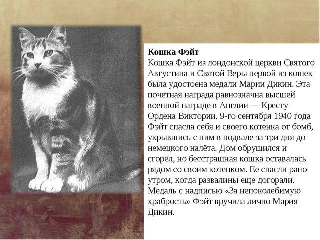 Кошка Фэйт Кошка Фэйт из лондонской церкви Святого Августина и Святой Веры пе...