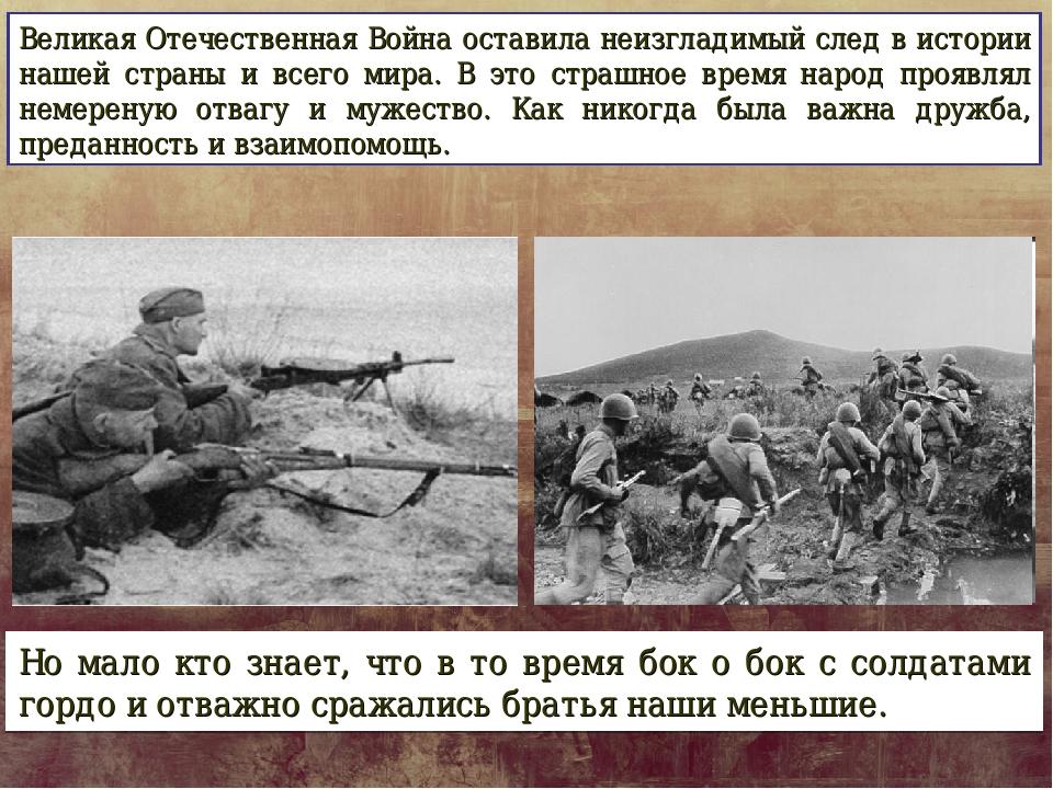 Великая Отечественная Война оставила неизгладимый след в истории нашей страны...
