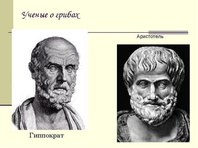 Ученые о грибах Гиппократ Аристотель