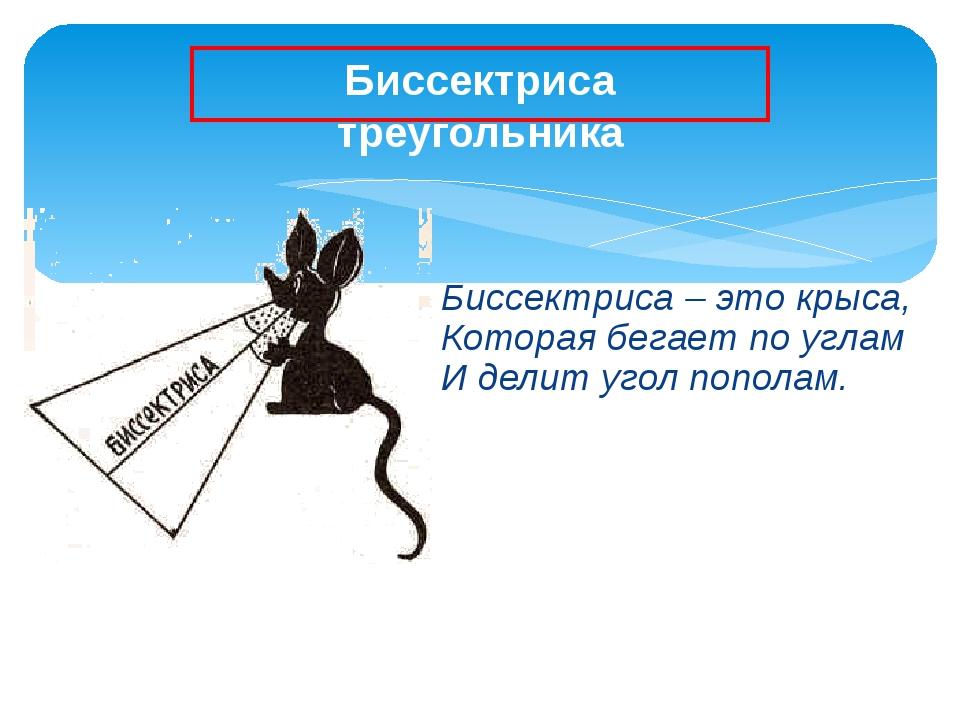 Биссектриса – это крыса, Которая бегает по углам И делит угол пополам. Биссек...