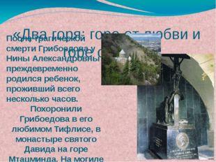 После трагической смерти Грибоедова у Нины Александровны преждевременно родил