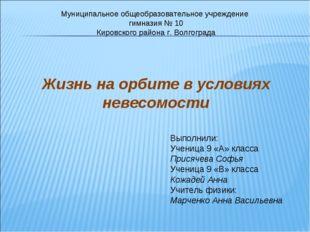Муниципальное общеобразовательное учреждение гимназия № 10 Кировского района