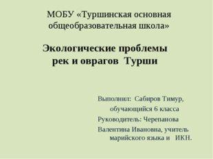 МОБУ «Туршинская основная общеобразовательная школа» Экологические проблемы р