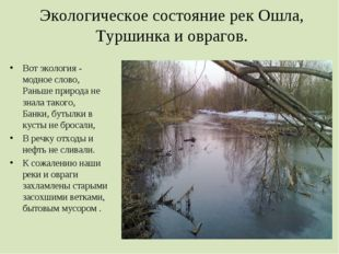 Экологическое состояние рек Ошла, Туршинка и оврагов. Вот экология - модное