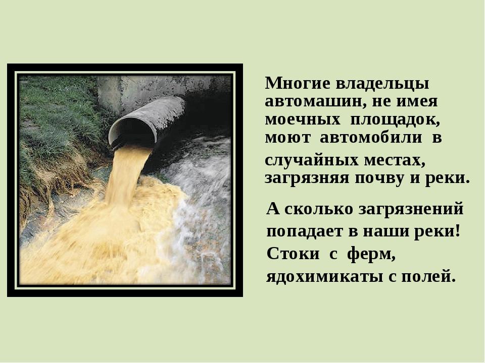 А сколько загрязнений попадает в наши реки! Стоки с ферм, ядохимикаты с полей...
