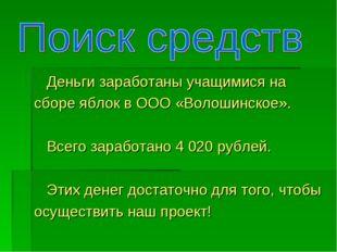 Деньги заработаны учащимися на сборе яблок в ООО «Волошинское». Всего зарабо