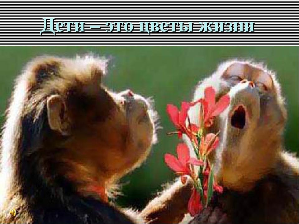 Дети – это цветы жизни