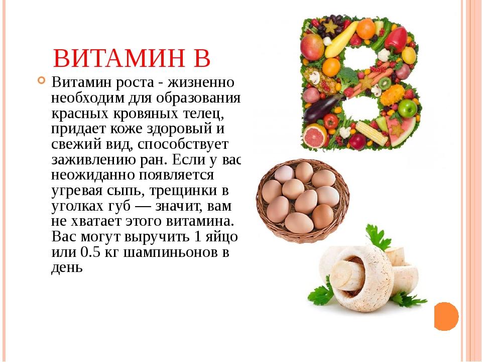 ВИТАМИН В Витамин роста - жизненно необходим для образования красных кровяных...