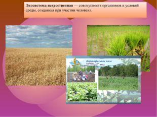 Экосистема искусственная — совокупность организмов и условий среды, созданная