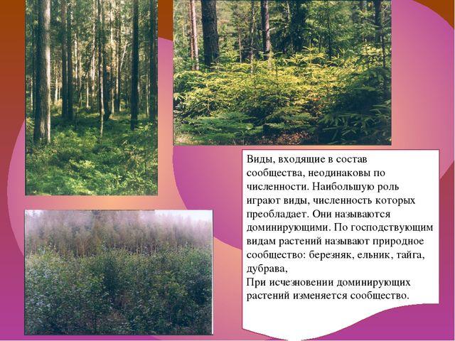 Виды, входящие в состав сообщества, неодинаковы по численности. Наибольшую ро...