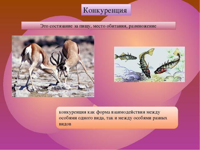 конкуренция как форма взаимодействия между особями одного вида, так и между о...