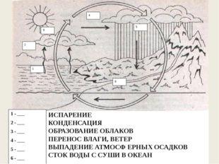 ИСПАРЕНИЕ КОНДЕНСАЦИЯ ОБРАЗОВАНИЕ ОБЛАКОВ ПЕРЕНОС ВЛАГИ, ВЕТЕР ВЫПАДЕНИЕ АТМО