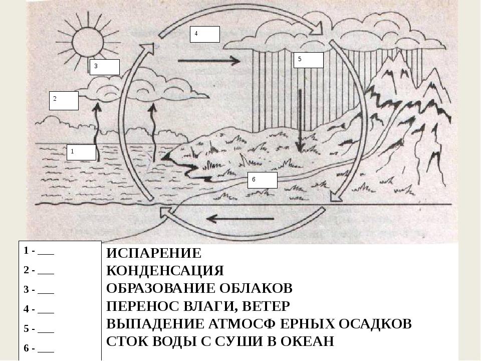 ИСПАРЕНИЕ КОНДЕНСАЦИЯ ОБРАЗОВАНИЕ ОБЛАКОВ ПЕРЕНОС ВЛАГИ, ВЕТЕР ВЫПАДЕНИЕ АТМО...