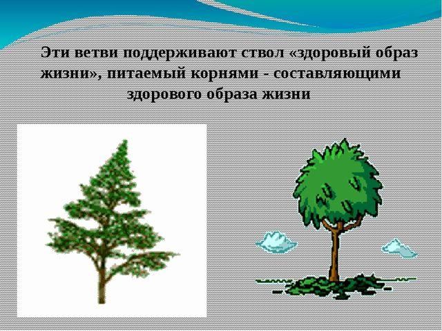 Эти ветви поддерживают ствол «здоровый образ жизни», питаемый корнями - сост...