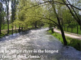 The Salgir river is the longest river in the Crimea.
