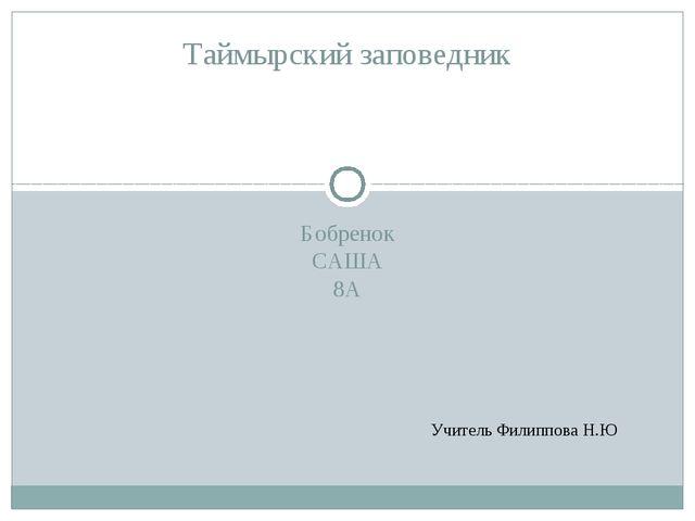 Бобренок САША 8А Таймырский заповедник Учитель Филиппова Н.Ю