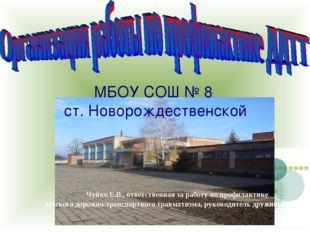МБОУ СОШ № 8 ст. Новорождественской Чуйко Е.В., ответственная за работу по п