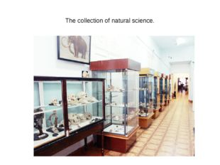The collection of natural science.