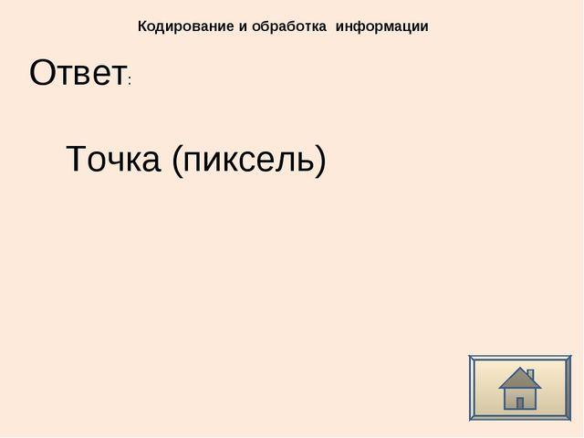 Ответ: Кодирование и обработка информации Точка (пиксель)