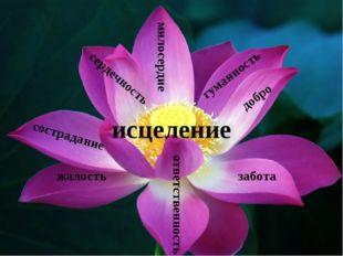 милосердие добро сострадание забота ответственность исцеление жалость гуманн