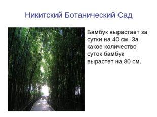 Никитский Ботанический Сад Бамбук вырастает за сутки на 40 см. За какое колич