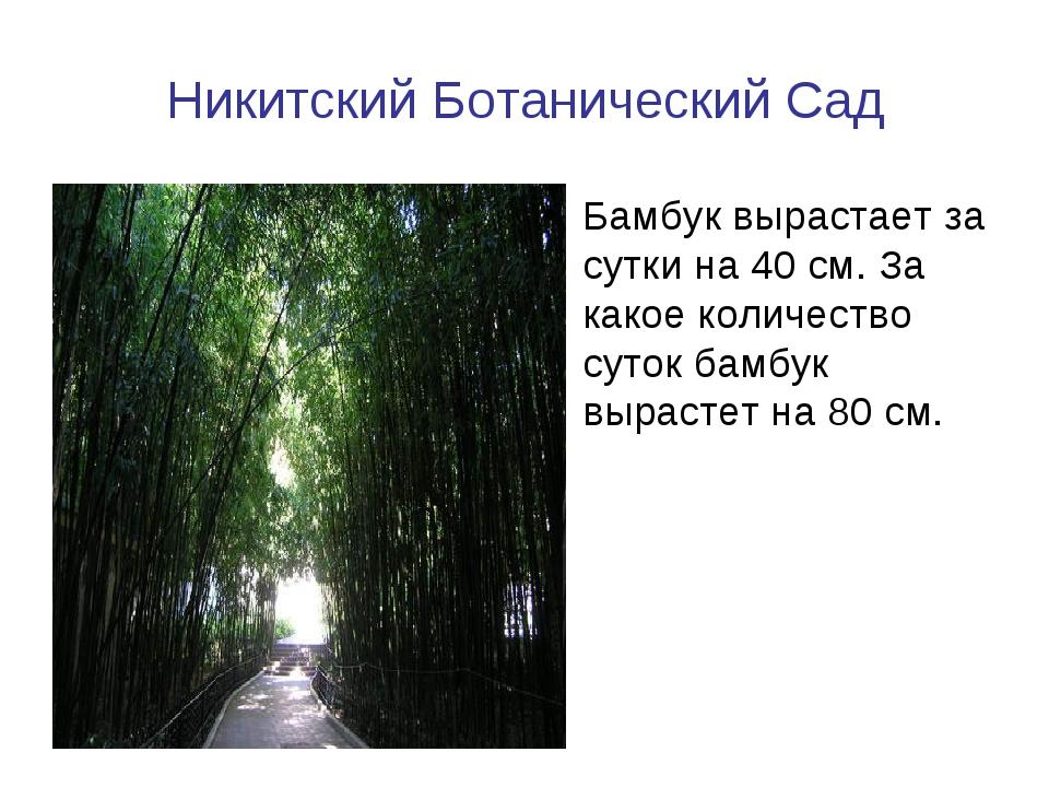 Никитский Ботанический Сад Бамбук вырастает за сутки на 40 см. За какое колич...