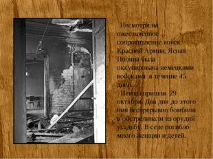 Несмотря на ожесточённое сопротивление войск Красной Армии, Ясная Поляна был