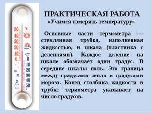 Основные части термометра — стеклянная трубка, наполненная жидкостью, и шкал
