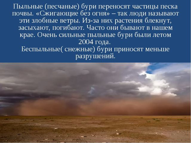 Пыльные (песчаные) бури переносят частицы песка почвы. «Сжигающие без огня» –...