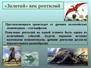 «Золотой» век рептилий Пресмыкающиеся происходят от древних палеозойских земн