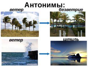 Антонимы: ветер безветрие ветер штиль