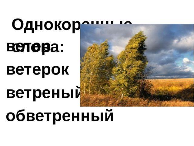 Однокоренные слова: ветер ветерок ветреный обветренный