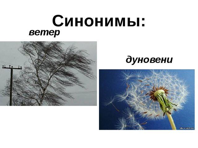 Синонимы: ветер дуновение