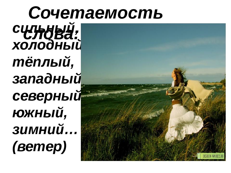 сильный, холодный, тёплый, западный, северный, южный, зимний… (ветер) Сочетае...