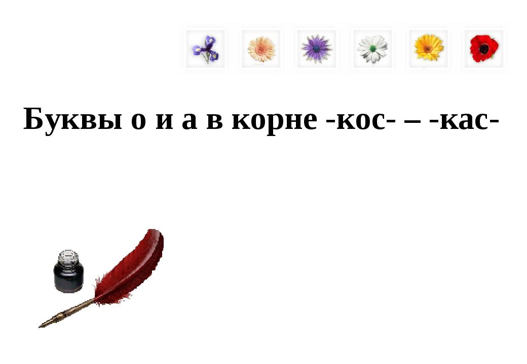 Буквы о и а в корне -кос- – -кас-
