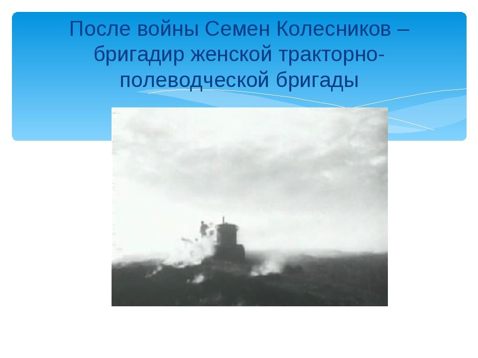 После войны Семен Колесников – бригадир женской тракторно-полеводческой бригады