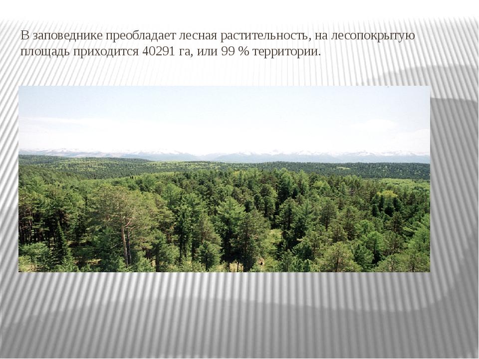 В заповеднике преобладает лесная растительность, на лесопокрытую площадь прих...