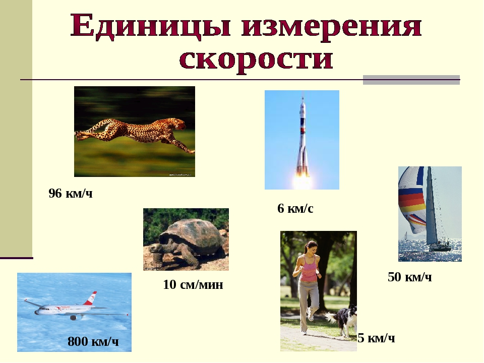 5 км/ч 800 км/ч 50 км/ч 96 км/ч 6 км/с 10 см/мин