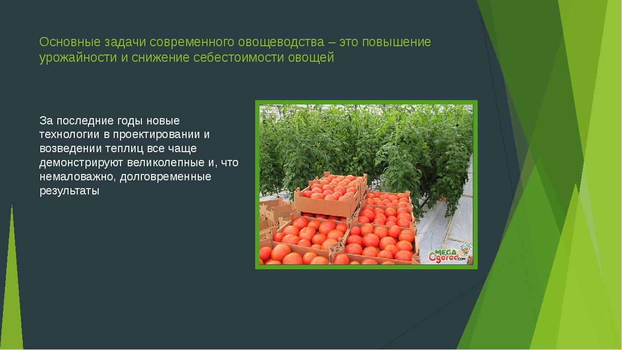 Основные задачи современного овощеводства – это повышение урожайности и сниже...