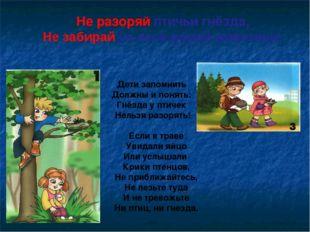 Не разоряй птичьи гнёзда, Не забирай из леса домой животных Дети запомнить Д