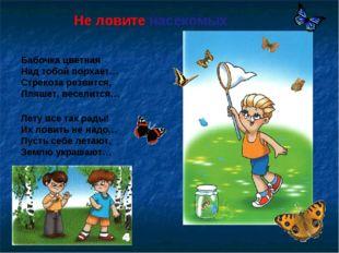 Не ловите насекомых Бабочка цветная Над тобой порхает… Стрекоза резвится, Пля