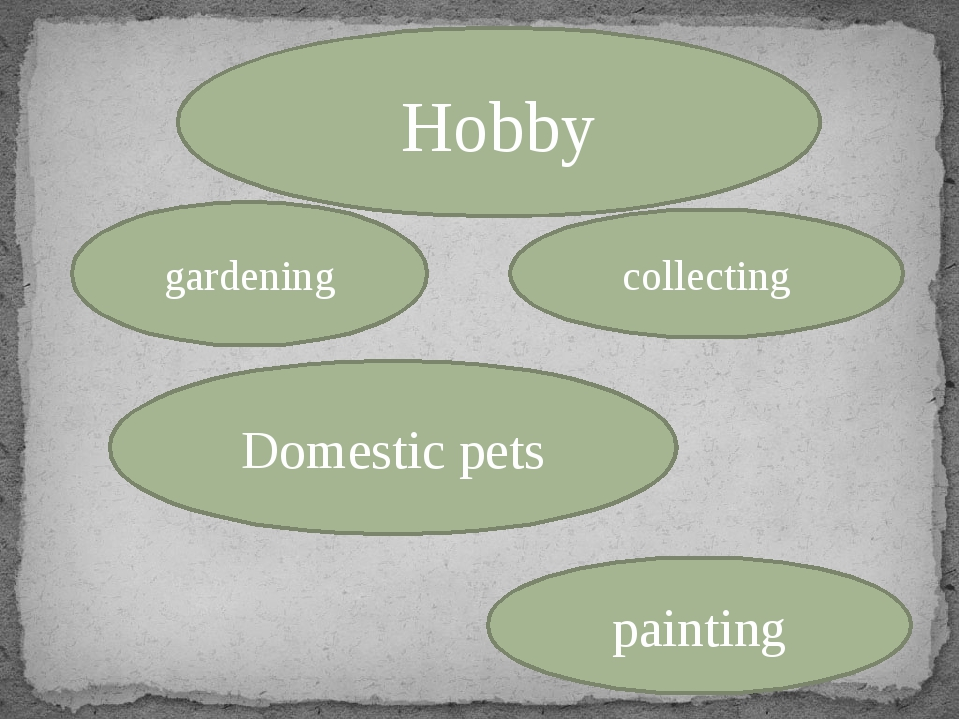 Hobby gardening collecting Domestic pets painting