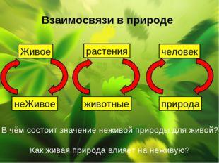 Взаимосвязи в природе Живое неЖивое растения животные человек природа В чём с