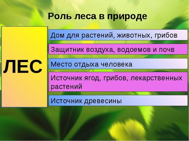 Роль леса в природе ЛЕС Дом для растений, животных, грибов Защитник воздуха,...
