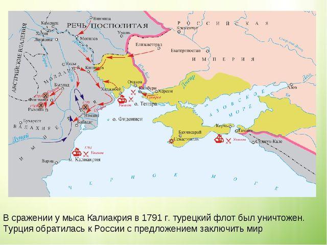 В сражении у мыса Калиакрия в 1791 г. турецкий флот был уничтожен. Турция обр...