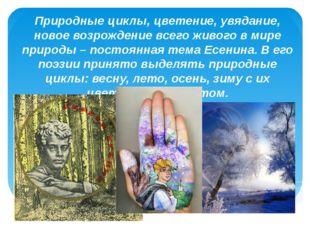 Природные циклы, цветение, увядание, новое возрождение всего живого в мире пр