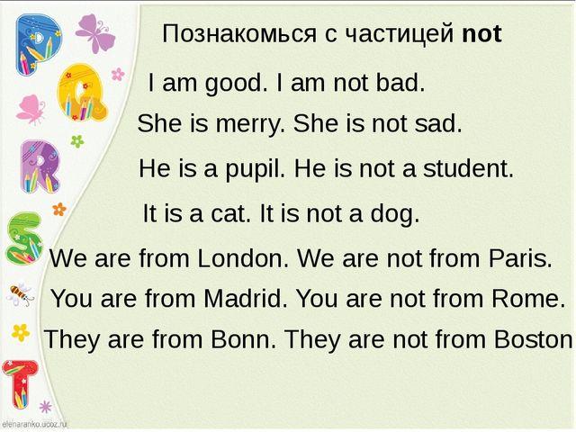 Познакомься с частицей not I am good. I am not bad. She is merry. She is not...