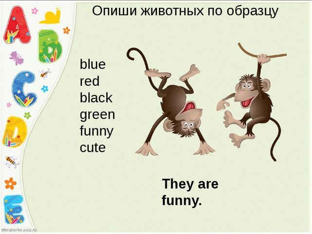 Опиши животных по образцу blue red black green funny cute They are funny.